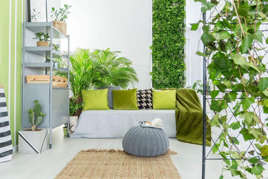 Astuces pour faire entrer la nature dans sa maison