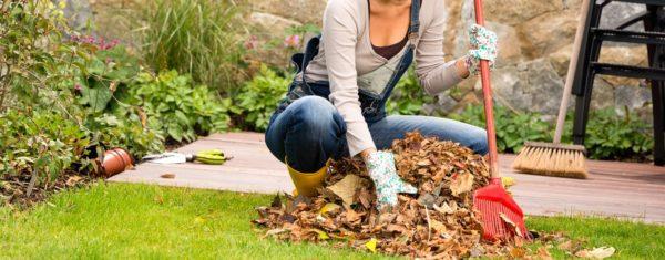 4 choses à faire dans la maison à l'automne